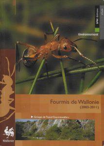 fourmis-de-wallonie