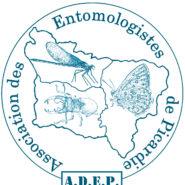 Bulletin de l'ADEP en ligne : année 1989