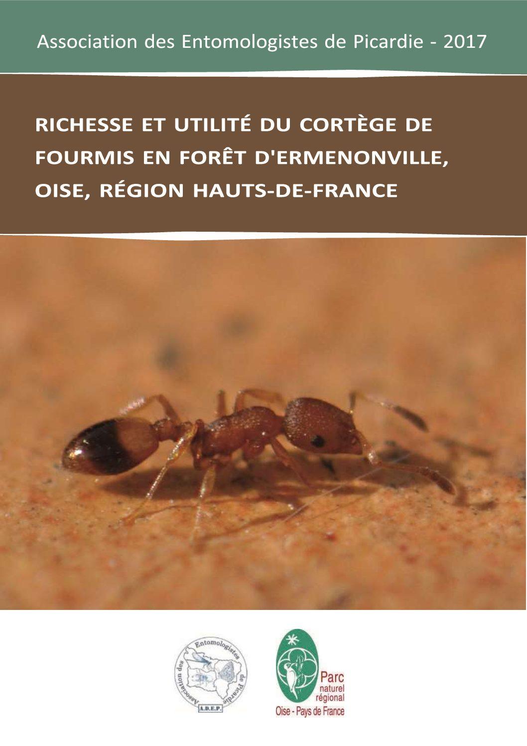 Rapport d'étude : richesse et utilité du cortège de fourmis en forêt d'Ermenonville, 2017