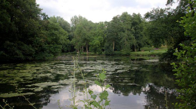 Atlas de la biodiversité communale : Inventaire des arthropodes du parc de geresme. Crépy-en-Valois (Oise, 60)